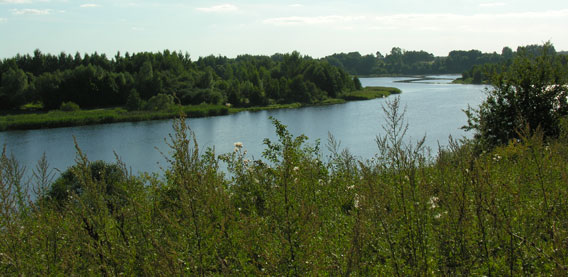 Image of the Marijampole site